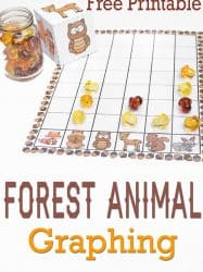 Forest Animal Graphing Free Printable