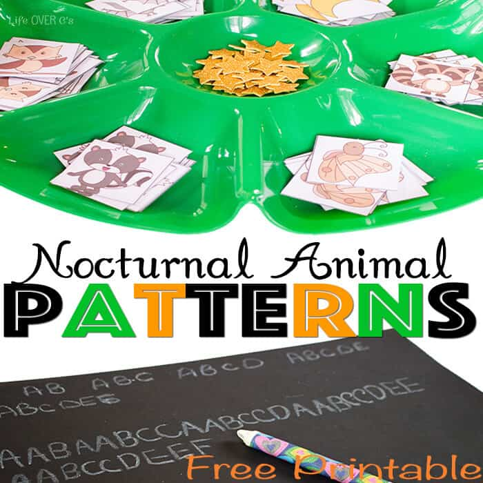 Patterns with Nocturnal Animals
