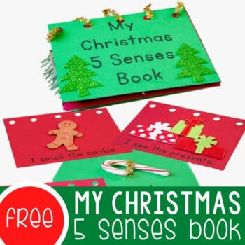 My Christmas Five Senses Book Featured Square Image