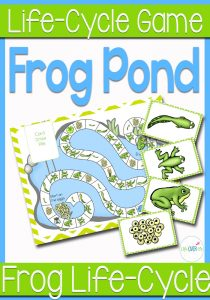 A Candyland®-styled game for reviewing the frog life cycle. Perfect for a life cycle unit or learning about amphibians.