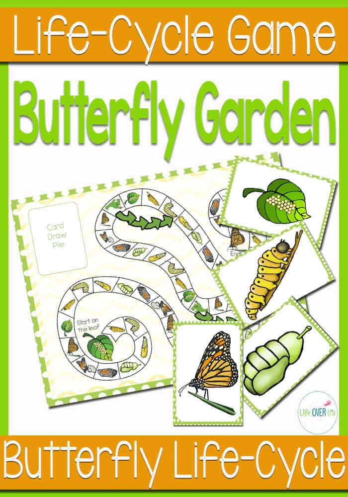This butterfly life cycle game can be a file folder game or a life-size interactive game. So much fun!