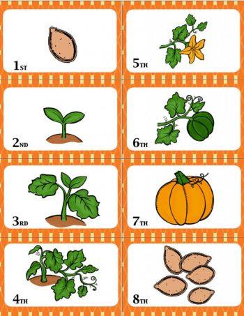 pumpkinwar1