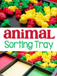 Animal Counters Color Sorting Tray
