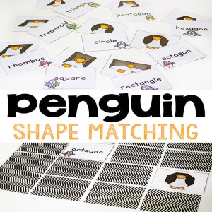 Penguin-Shape-Matching-square