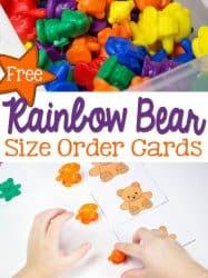 Rainbow Bear Cards: Size Order