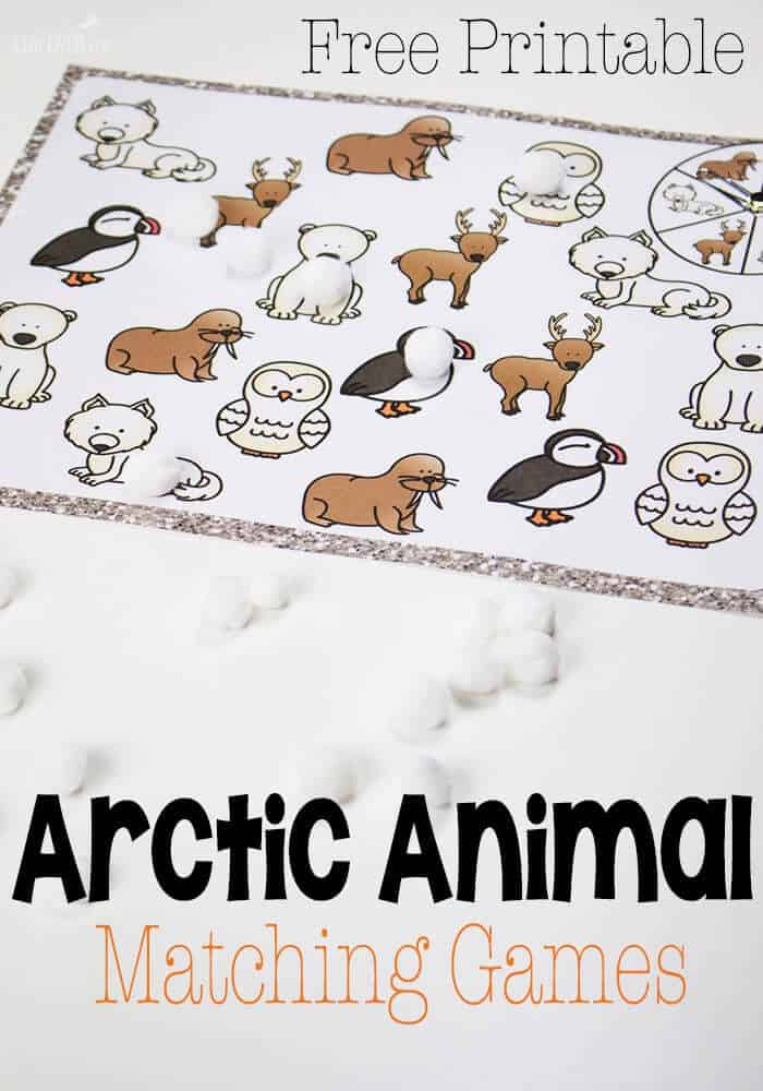 Arctic Animal Matching Game