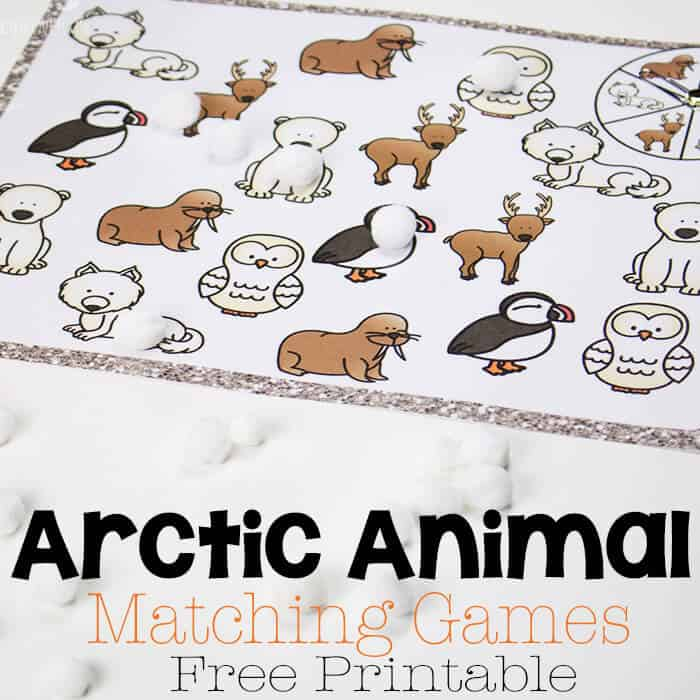 Arctic Animal Matching Games