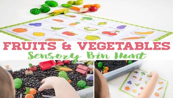 This fruit & vegetable hunt sensory bin is a great way to work on language skills and matching pictures.