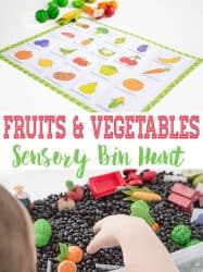 Fruit and Vegetable Hunt Farm Sensory Bin