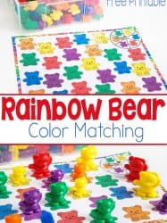 Rainbow Bear Color Matching Spinner Game