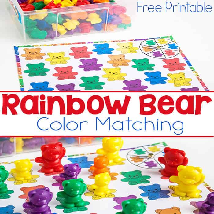 Rainbow Bear Color Matching Spinner