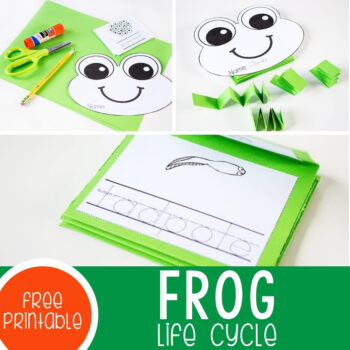 Free Printable Frog Life Cycle Mini Book Featured Square Image