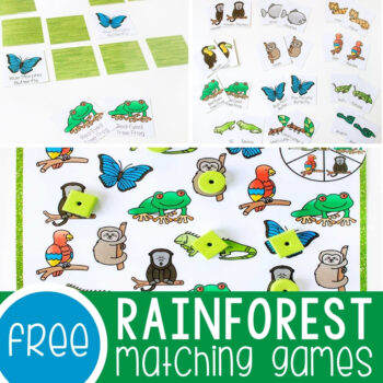 Rainforest Matching Games for Preschoolers Featured Square Image
