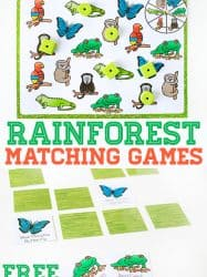 Rainforest Matching Games for Preschoolers