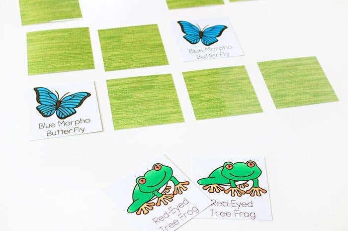 Free Printable Rainforest Matching Activities for Preschoolers. Preschoolers will love matching the animals in this fun spin & cover game and memory game. A great way to work on language development and learn the names of rainforest animals.