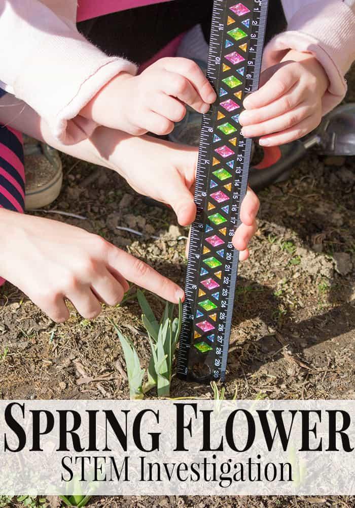 Spring Flower STEM Investigation for Preschoolers