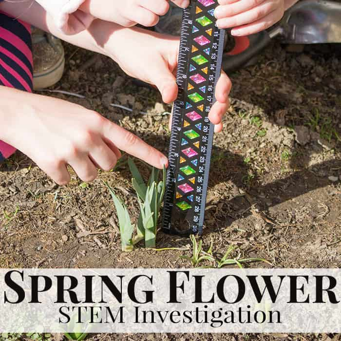 Spring Flower STEM Investigation