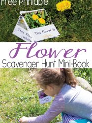Flower Scavenger Hunt Mini-Book