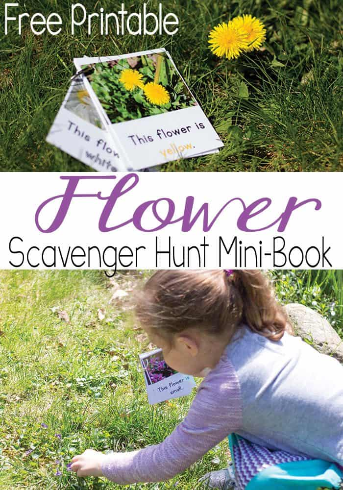 This free printable flower scavenger hunt mini-book is a great way to learn colors, sizes and positional words. A great outdoor kids activity for spring and summer!