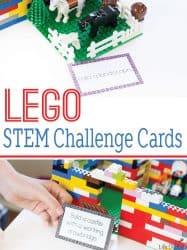 LEGO STEM Challenge Cards
