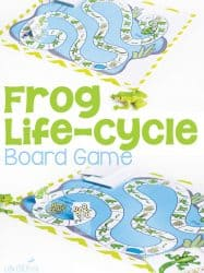 Frog Life-Cycle Board Game