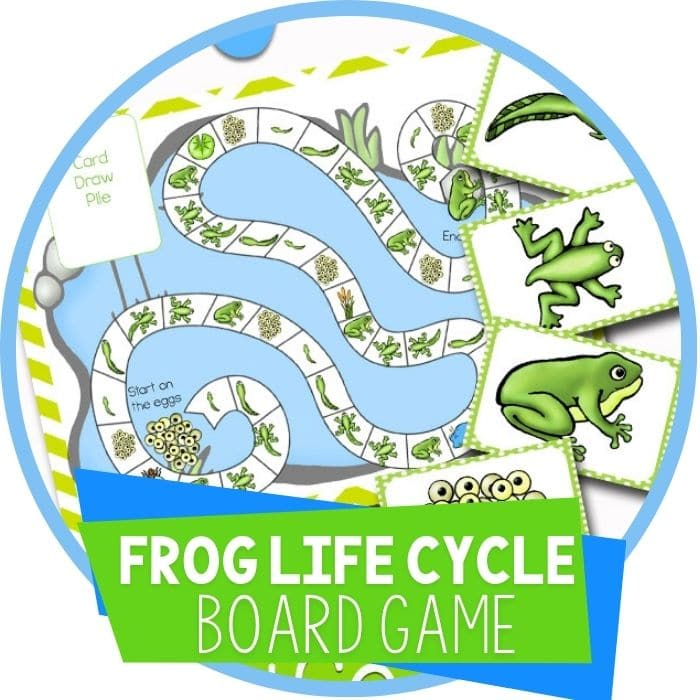 Frog Life-Cycle Science Board Game