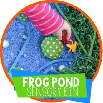 frog pond sensory bin Featured Image
