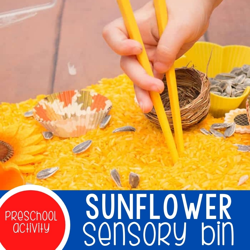 Sunflower Sensory Bin for Fine-Motor Skills