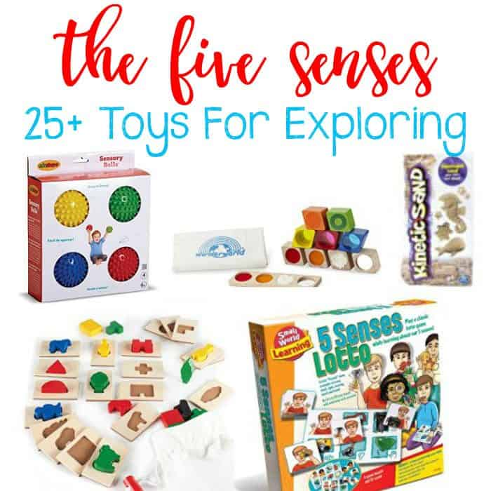 25+ Toys To Help Children Explore The Five Senses.
