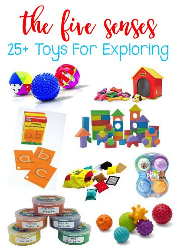 25+ Toys To Help Children Explore The Five Senses.