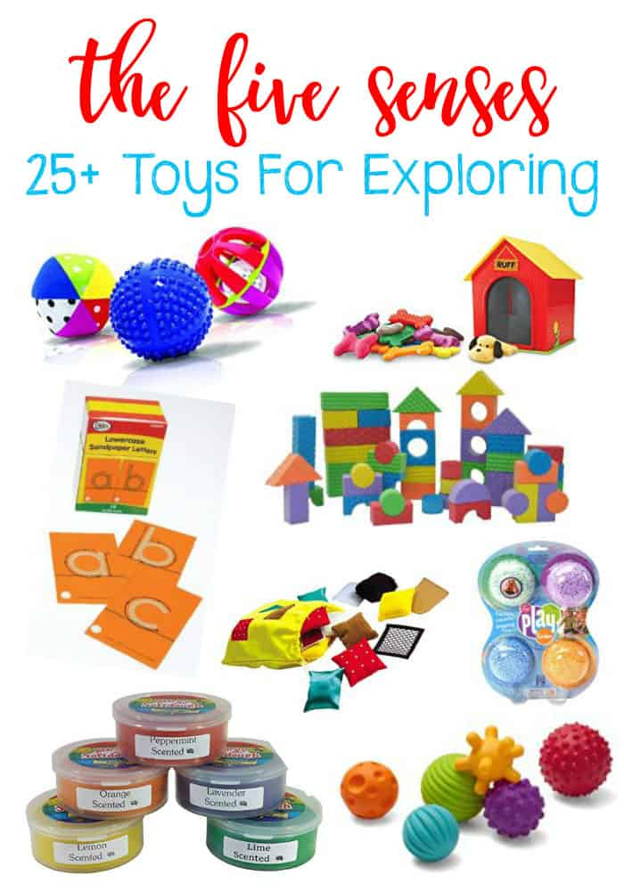 25+ Toys for Exploring the Five Senses