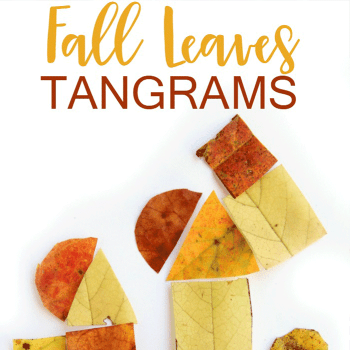 Fall leaves tangrams for critical thinking skills and beginning geometry.