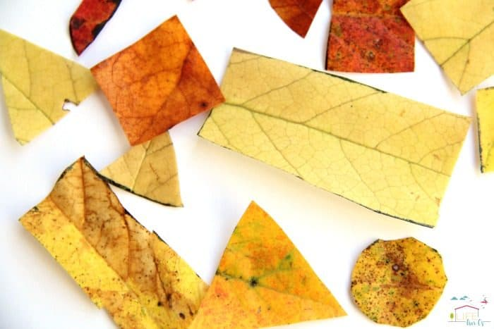 Kids will love to use this fall leaves tangram activity to build math skills!