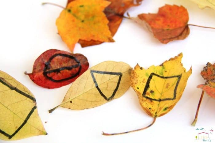 Use this fall leaves tangram activity to build math concepts.