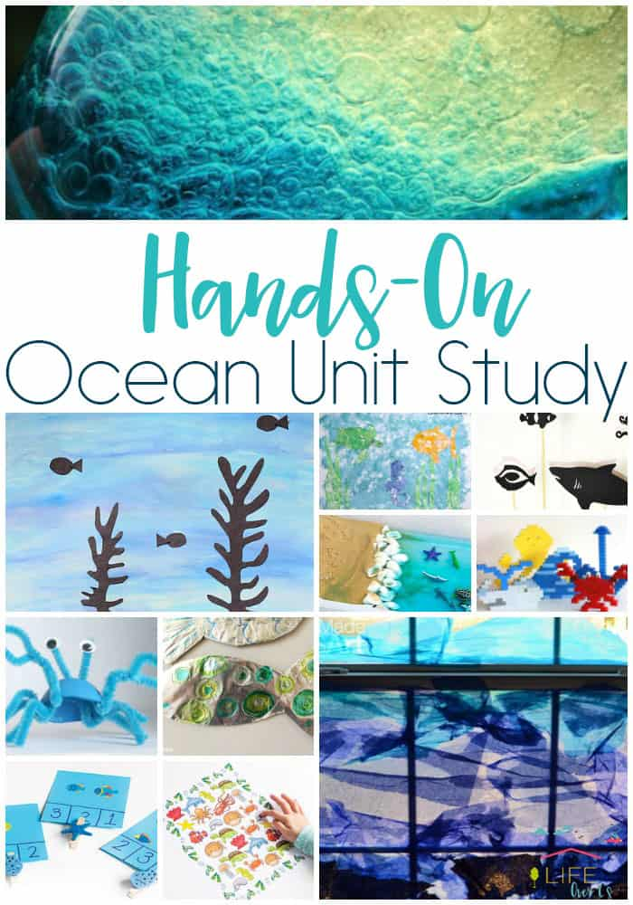 Create An Awesome Ocean Unit Study Life Over Cs