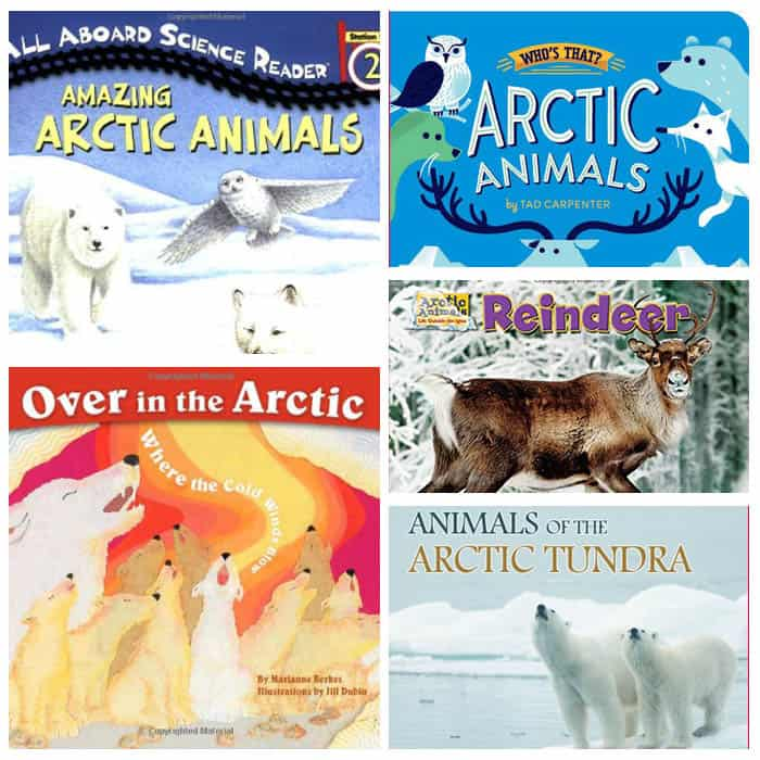 25+ Arctic Animal Books for Kids