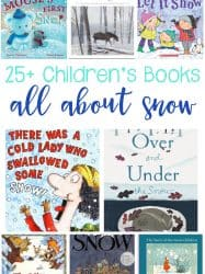 25+ Fun Snow Books for Kids