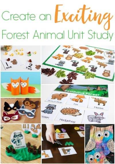 Fun Ideas For A Forest Animal Unity Study