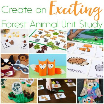 Over 50 exciting activities for a forest animal unit study! Science, math, literacy, art, sensory activities and more!