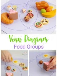 Venn Diagram Food Groups: Preschool Nutrition Activity