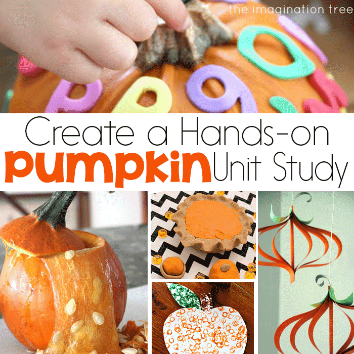 Kids will love exploring pumpkins this fall with a hands-on pumpkin unit study! Use pumpkins for science, math, STEM, literacy, art and so much more!!