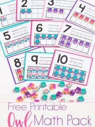 Owl Mini Eraser Math Activities for Preschoolers