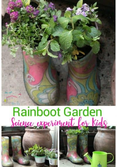 Kids will love making and caring for their very own rainboot mini garden! A fun way to learn about garden and plant science!