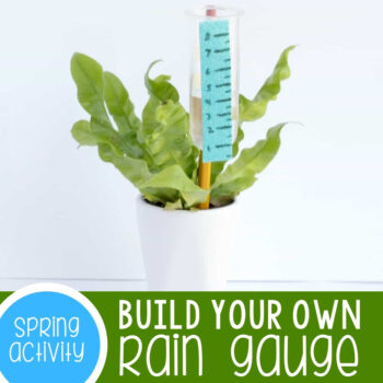 Build a Rain Gauge STEM Activity Featured Square Image