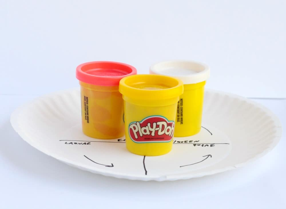 Learn about the life cycle of ants in this fun hands on play dough ant life cycle activity! Kids will love building their own ants!