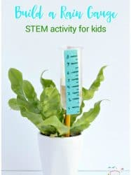 Build a Rain Gauge STEM Activity for Kids