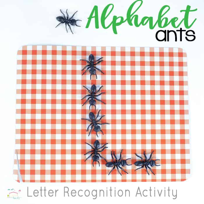 Use pretend ants to set up this simple letter formation activity or preschoolers!