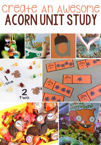 Hands On Acorn Learning Activities For Kids: Math, Literacy, Art & Crafts, Sensory, and Science.