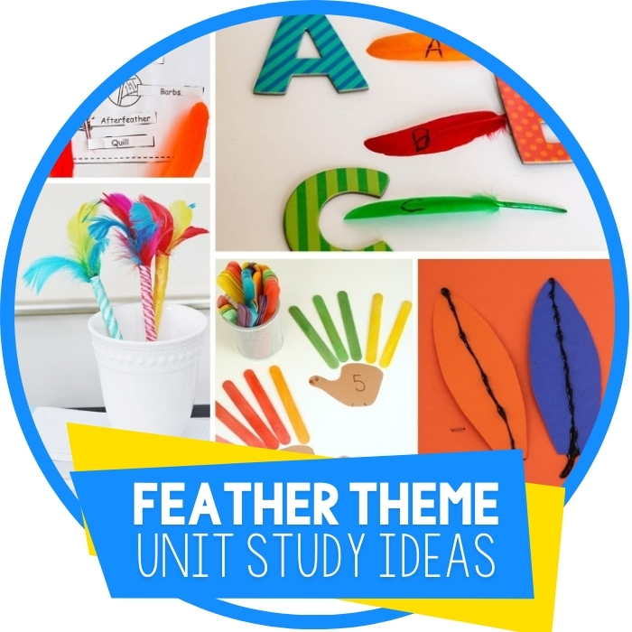 40+ Ideas For A Fabulous Feather Themed Unit Study Featured Image
