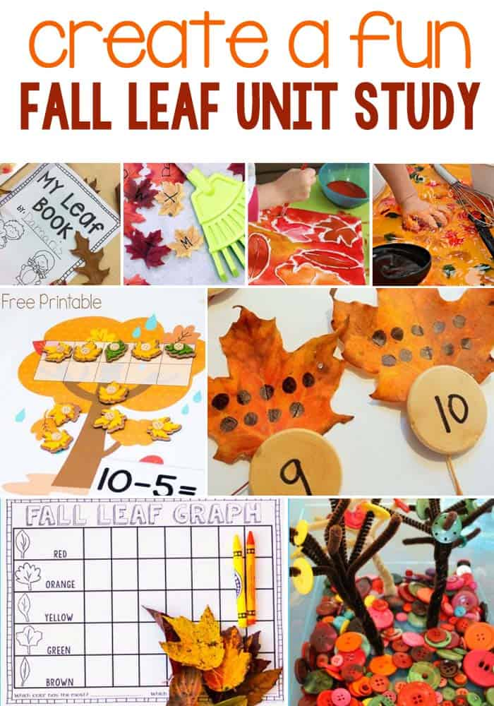 Create A Fun Fall Leaf Unit Study With Activities Including Math, Literacy, Art & Crafts, Sensory and Science